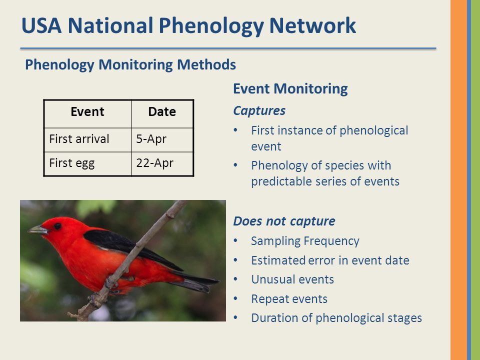 USA National Phenology Network Phenology Monitoring Methods EventDate First arrival5-Apr First egg22-Apr Event Monitoring Captures First instance of phenological event Phenology of species with predictable series of events Does not capture Sampling Frequency Estimated error in event date Unusual events Repeat events Duration of phenological stages