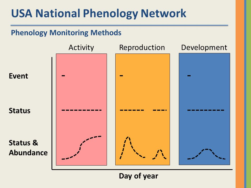 USA National Phenology Network Event ActivityReproductionDevelopment Day of year Phenology Monitoring Methods Status & Abundance Status