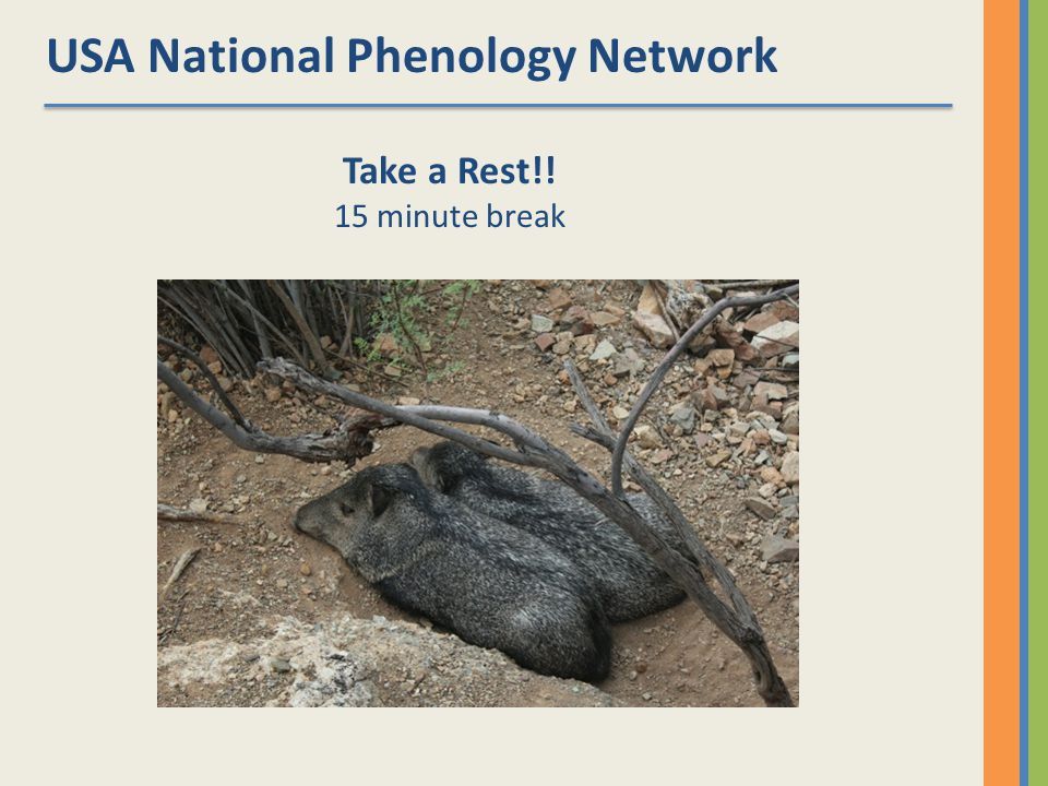 USA National Phenology Network Take a Rest!! 15 minute break
