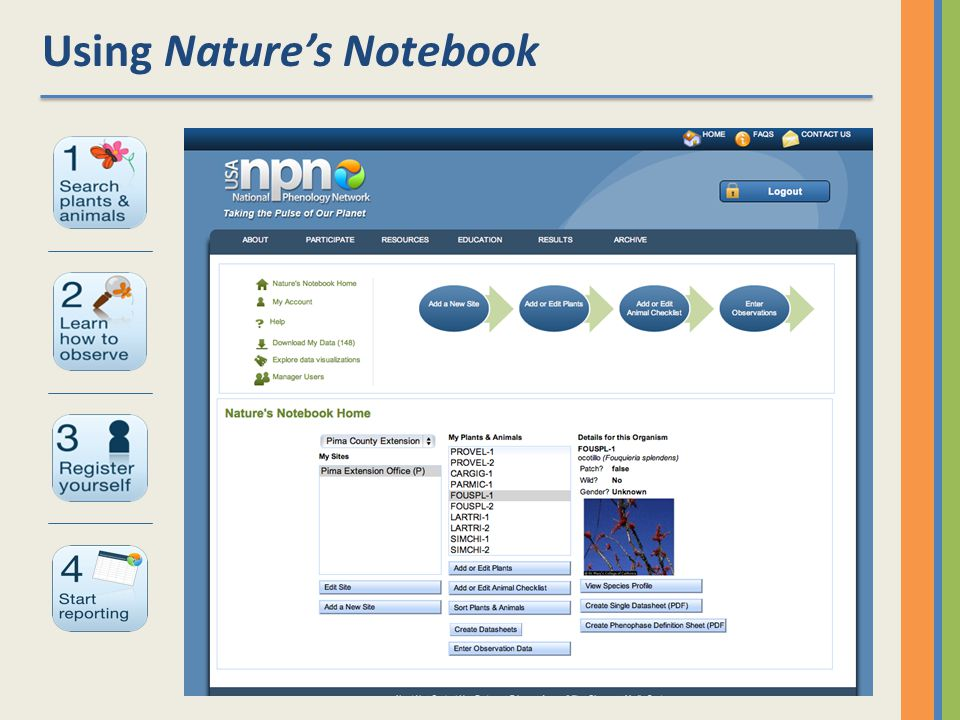 Using Natures Notebook