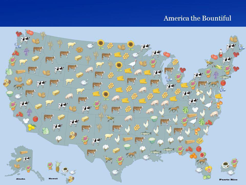America the Bountiful