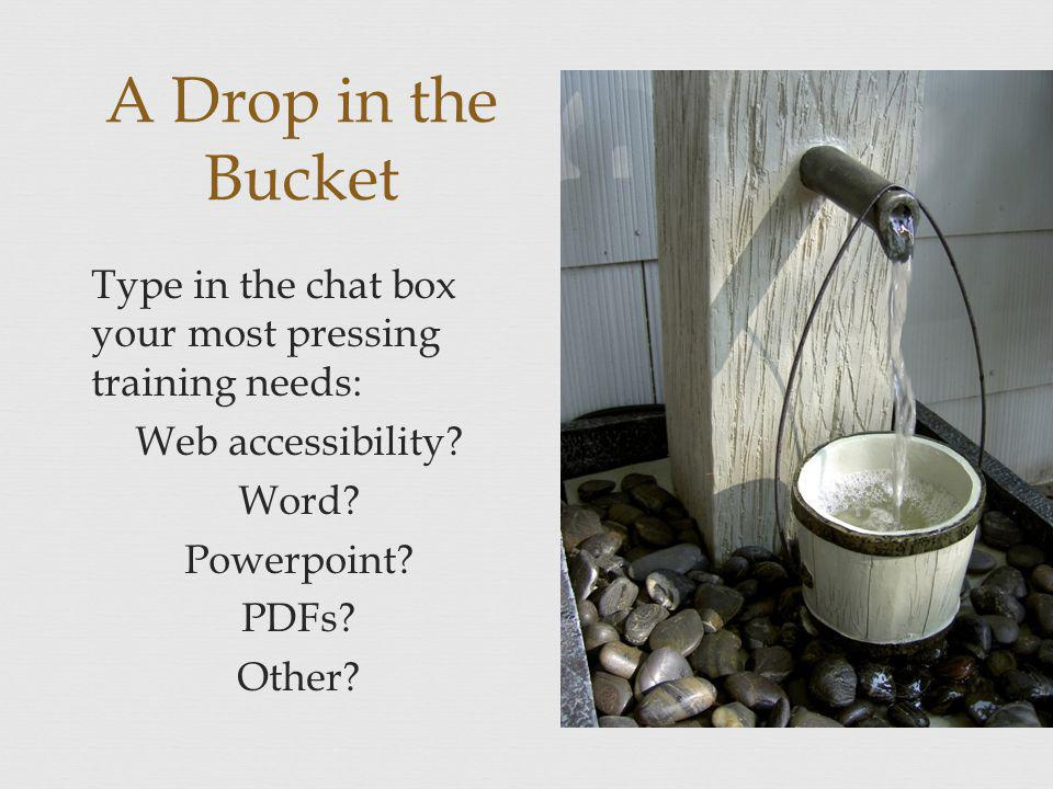 A Drop in the Bucket Type in the chat box your most pressing training needs: Web accessibility.