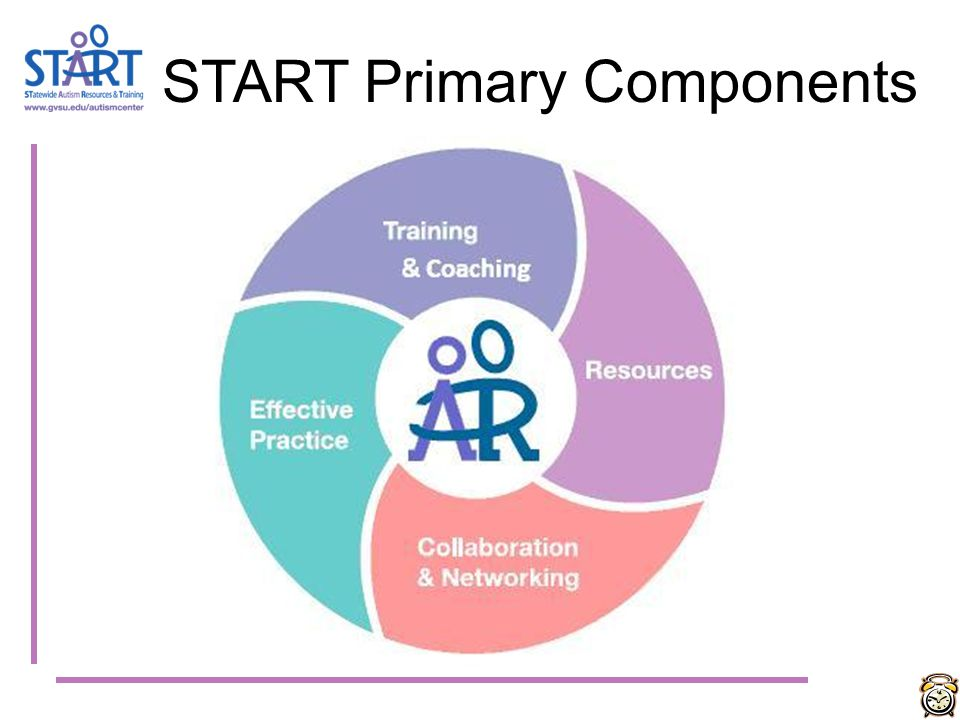 START Primary Components