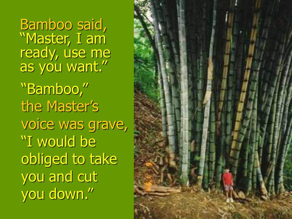 Bamboo said, Master, I am ready, use me as you want.