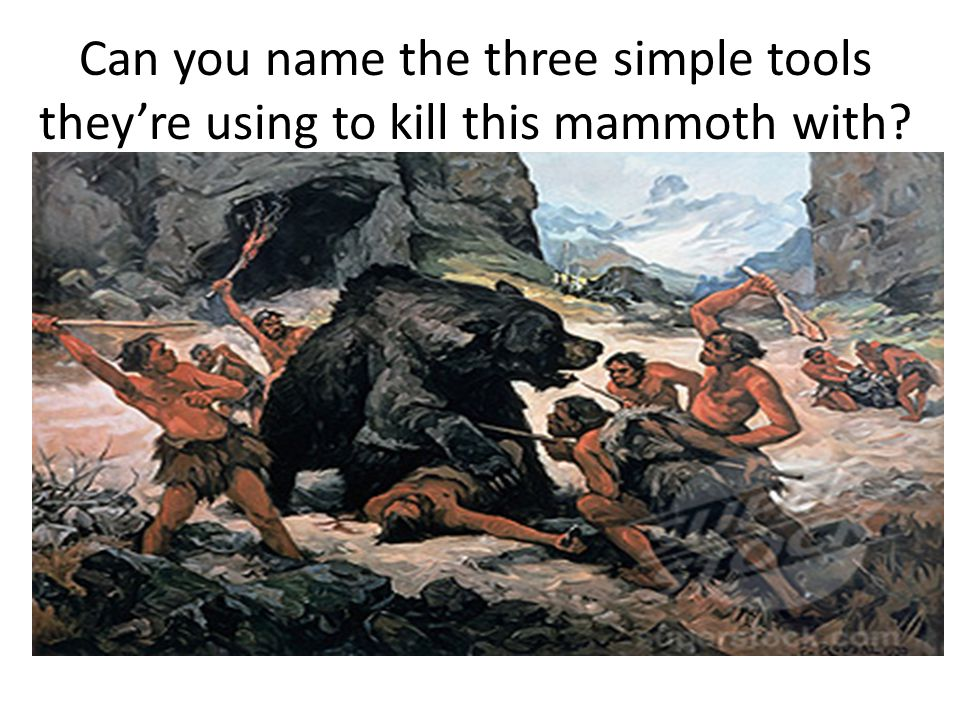 Can you name the three simple tools theyre using to kill this mammoth with?