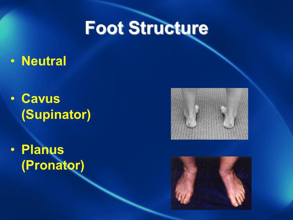 Foot Structure Neutral Cavus (Supinator) Planus (Pronator)