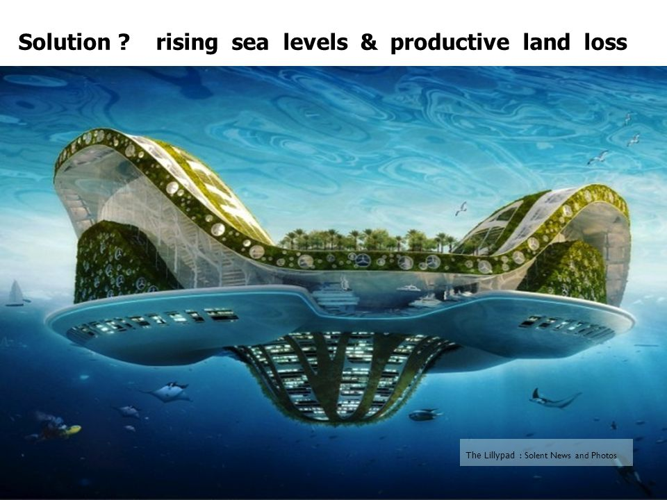 June 2012www.annimac.com.au25 The Lillypad : Solent News and Photos Solution ? rising sea levels & productive land loss