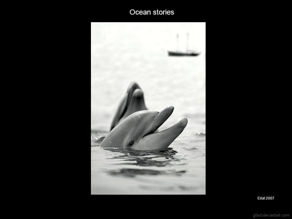 gilad.deviantart.com Ocean stories Eilat 2007