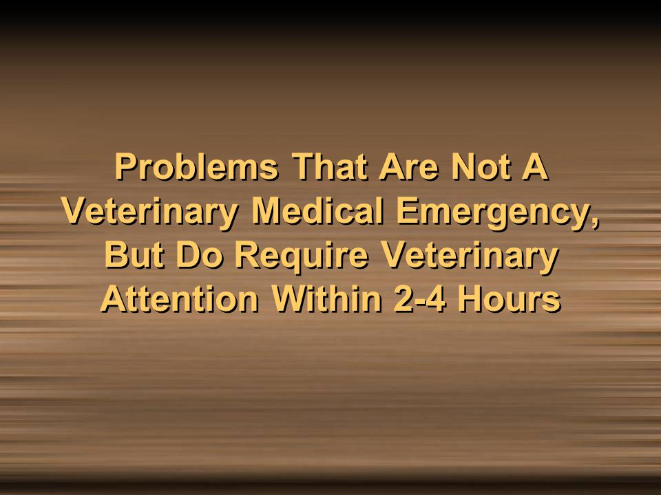 Problems That Are Not A Veterinary Medical Emergency, But Do Require Veterinary Attention Within 2-4 Hours