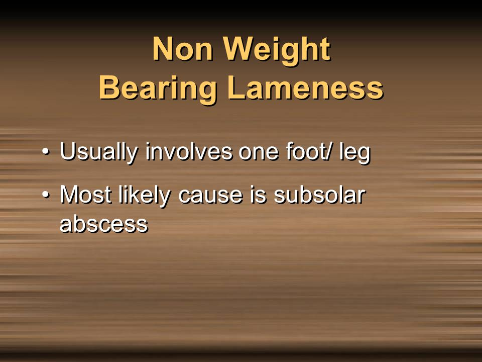 Usually involves one foot/ leg Most likely cause is subsolar abscess Usually involves one foot/ leg Most likely cause is subsolar abscess