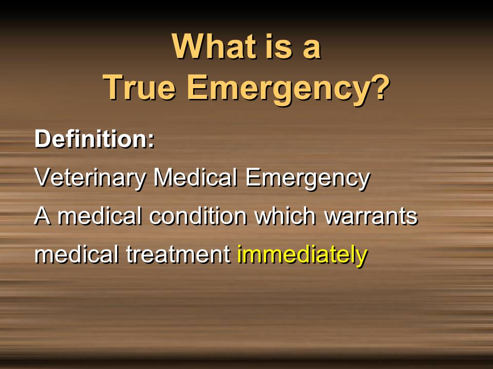 Problems That Require Veterinary Attention, But Are Not Urgent Emergencies Laceration –Not bleeding Non weight bearing lameness Eye problems Retained placenta Sick foals Grain intoxication High fever Other Laceration –Not bleeding Non weight bearing lameness Eye problems Retained placenta Sick foals Grain intoxication High fever Other