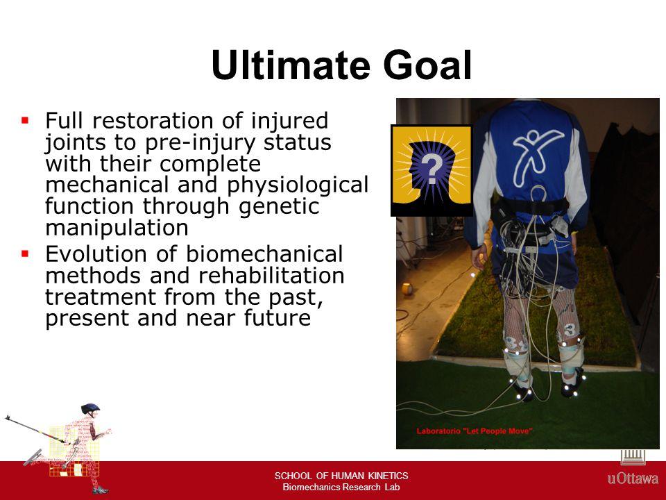 SCHOOL OF HUMAN KINETICS Biomechanics Research Lab Past, Present, and Future Development or improvement of biomechanical tools Rehabilitation Treatment Clinical approaches