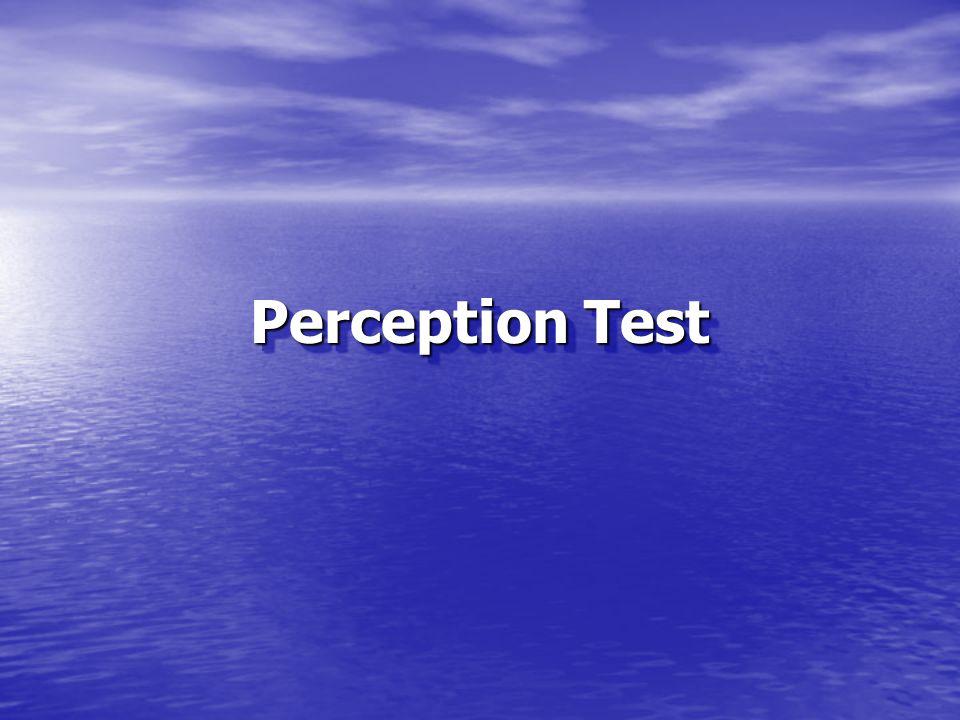Perception Test