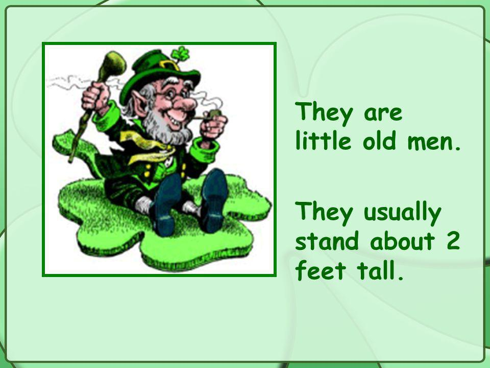 They are little old men. They usually stand about 2 feet tall.