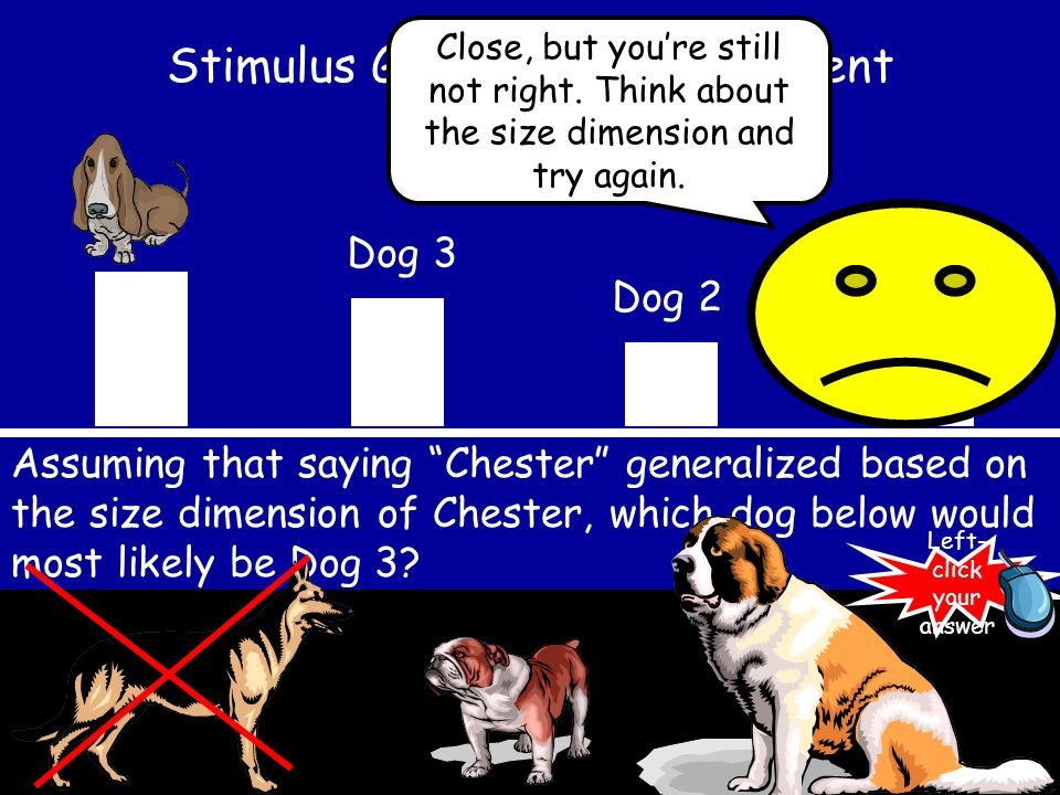 Stimulus Generalization Gradient Dog 1 Dog 2 Dog 3 Sorry, this dog might be Dog 3 if we were looking at the drooling dimension, but think about the sizes of the dogs and try again.