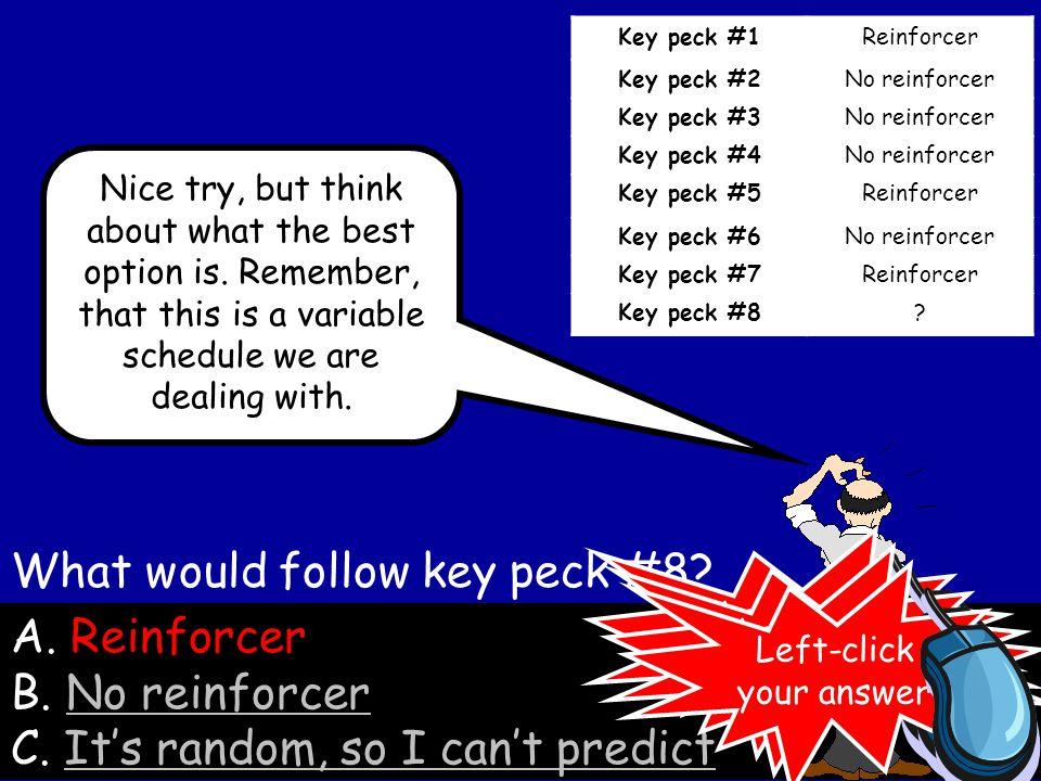 A. ReinforcerReinforcer B. No reinforcerNo reinforcer C.