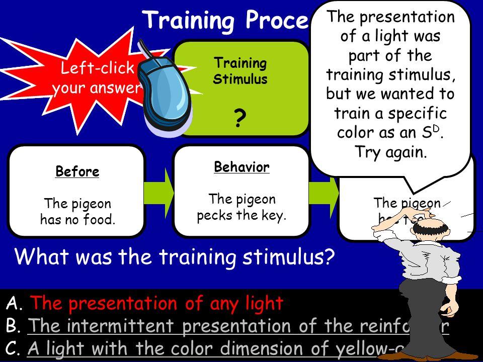 Training Procedure Behavior The pigeon pecks the key.