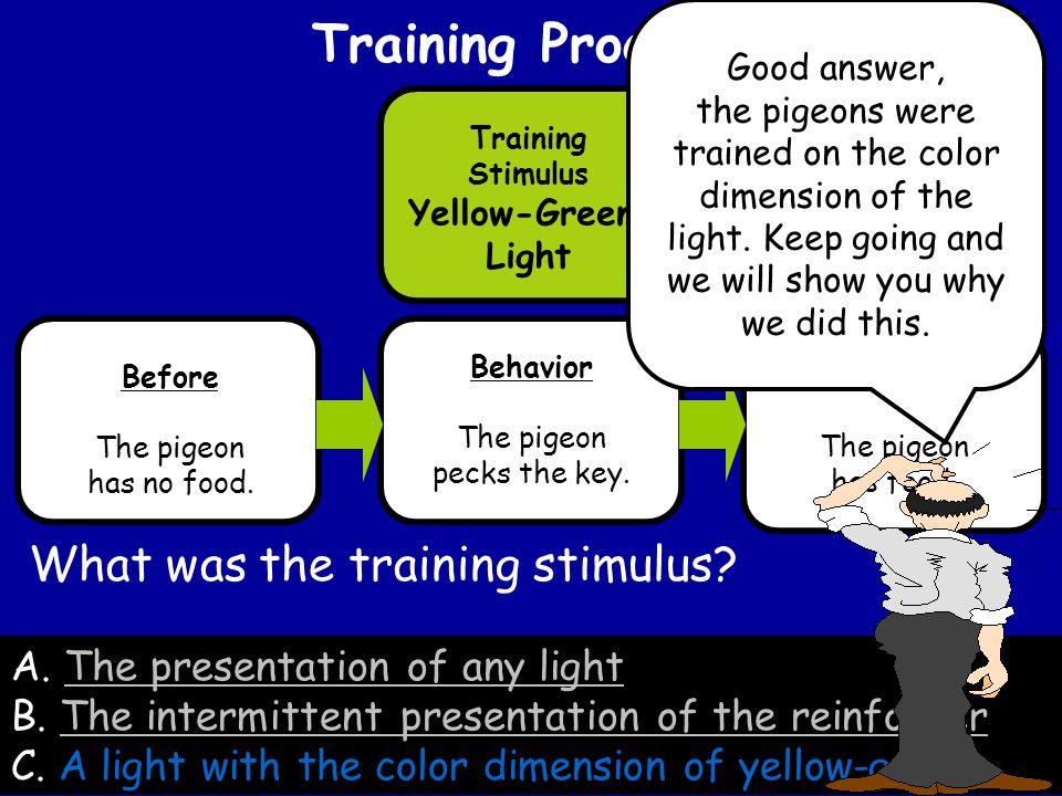 A. The presentation of any lightThe presentation of any light B.
