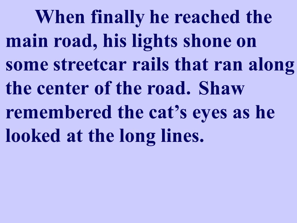 The car lights had been reflected in the eyes of a cat.