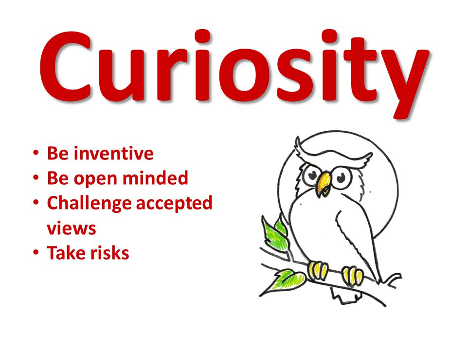 Curiosity Be inventive Be open minded Challenge accepted views Take risks