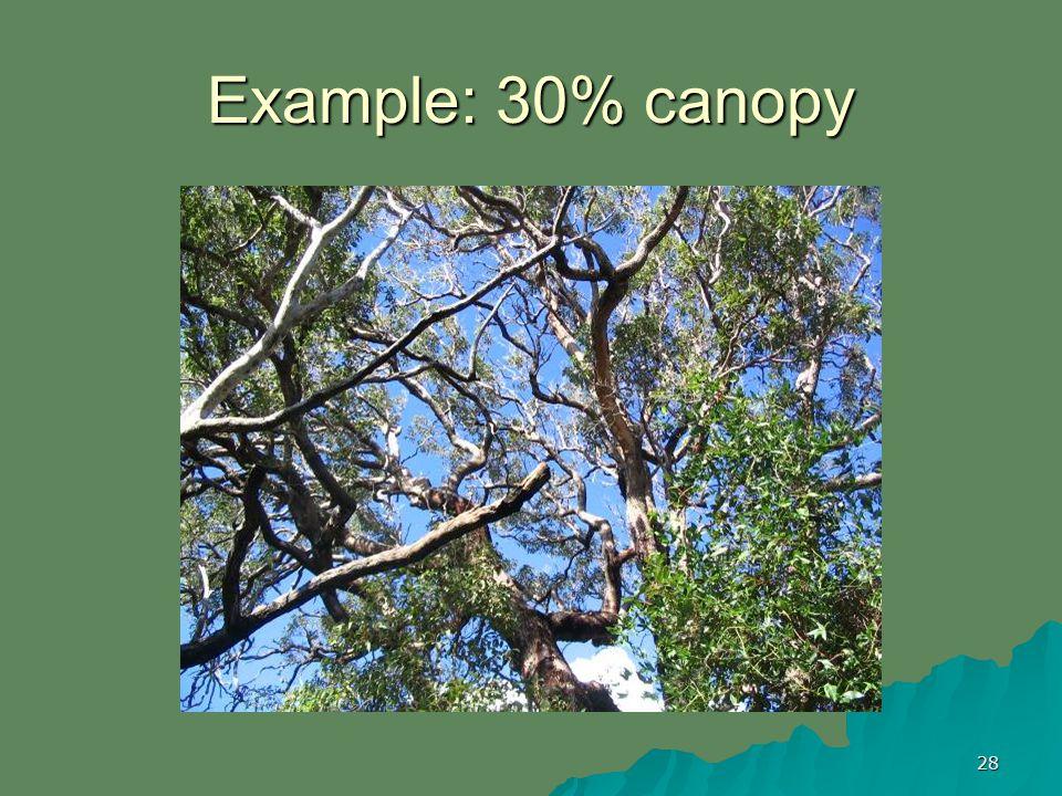 28 Example: 30% canopy