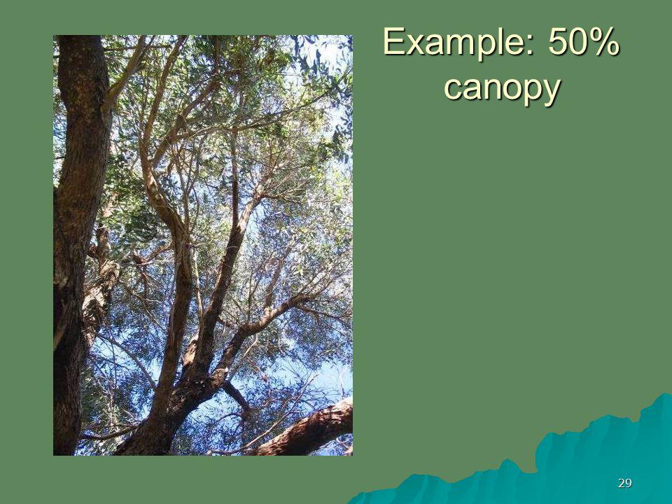 29 Example: 50% canopy