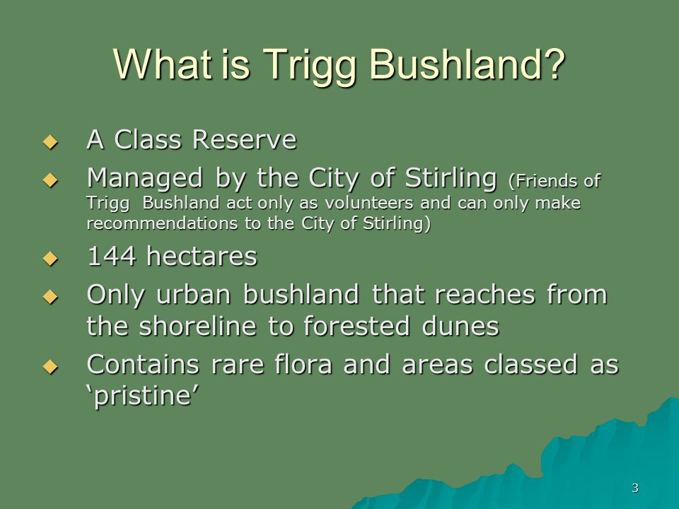 3 What is Trigg Bushland.