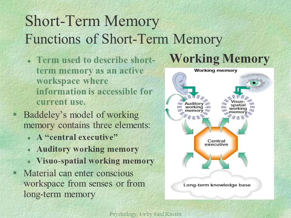 Psychology, 4/e by Saul Kassin ©2004 Prentice Hall Short-Term Memory Functions of Short-Term Memory Working Memory l Term used to describe short- term
