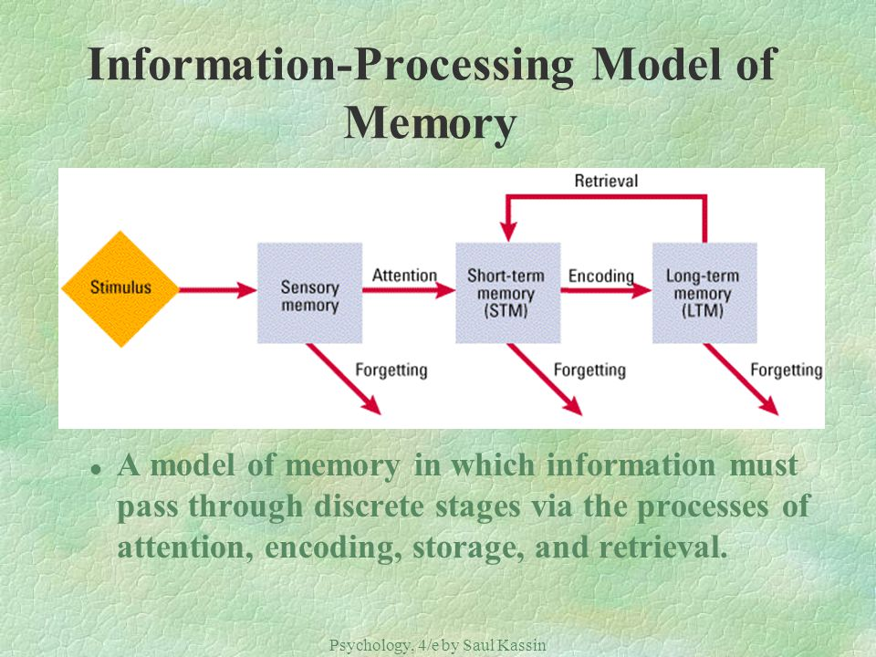 Psychology, 4/e by Saul Kassin ©2004 Prentice Hall Information-Processing Model of Memory l A model of memory in which information must pass through d