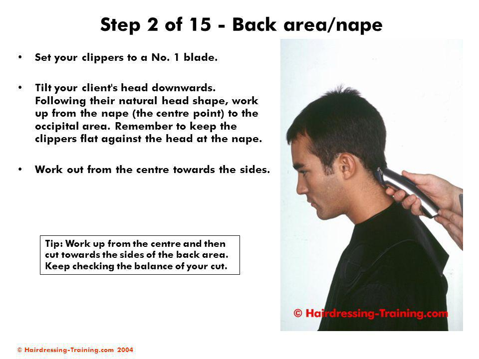 © Hairdressing-Training.com 2004 Step 2 of 15 - Back area/nape Set your clippers to a No. 1 blade. Tilt your client's head downwards. Following their