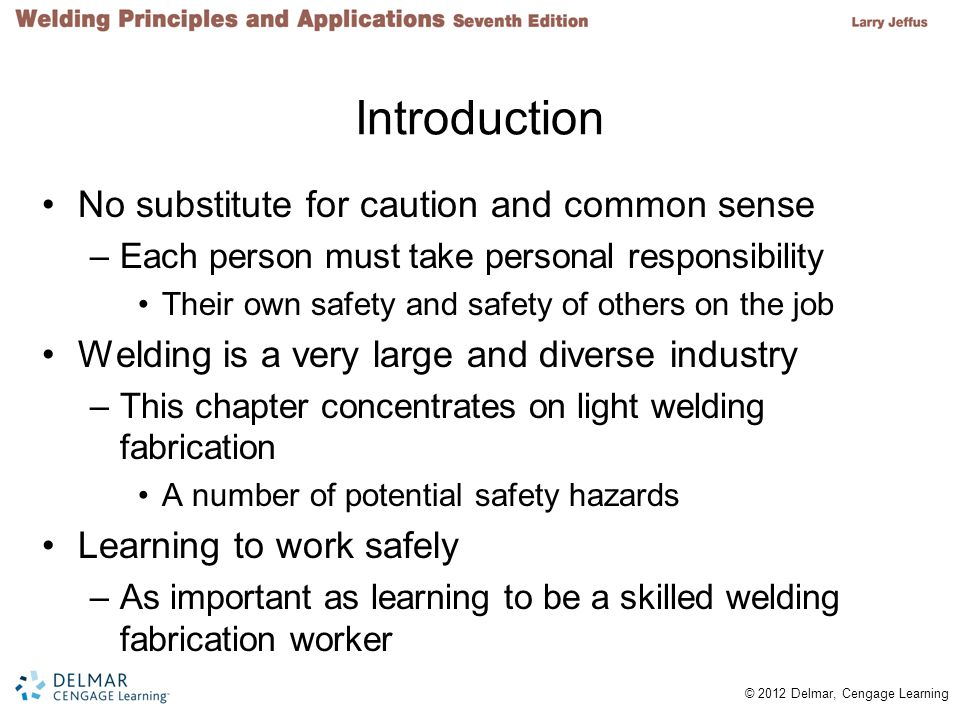 © 2012 Delmar, Cengage Learning Introduction No substitute for caution and common sense –Each person must take personal responsibility Their own safet