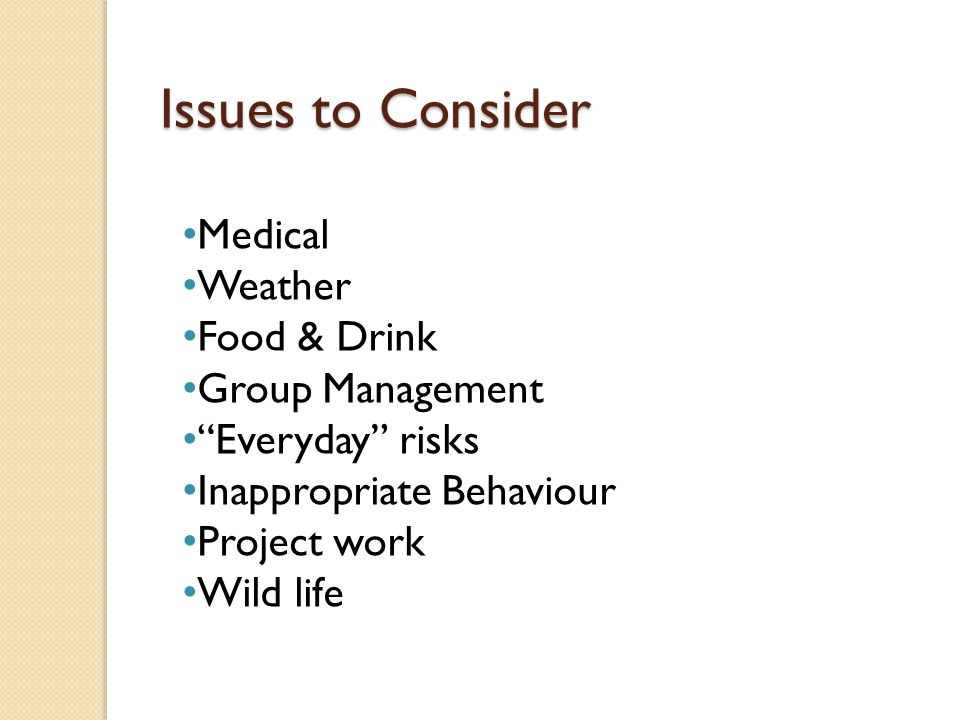 Issues to Consider Medical Weather Food & Drink Group Management Everyday risks Inappropriate Behaviour Project work Wild life