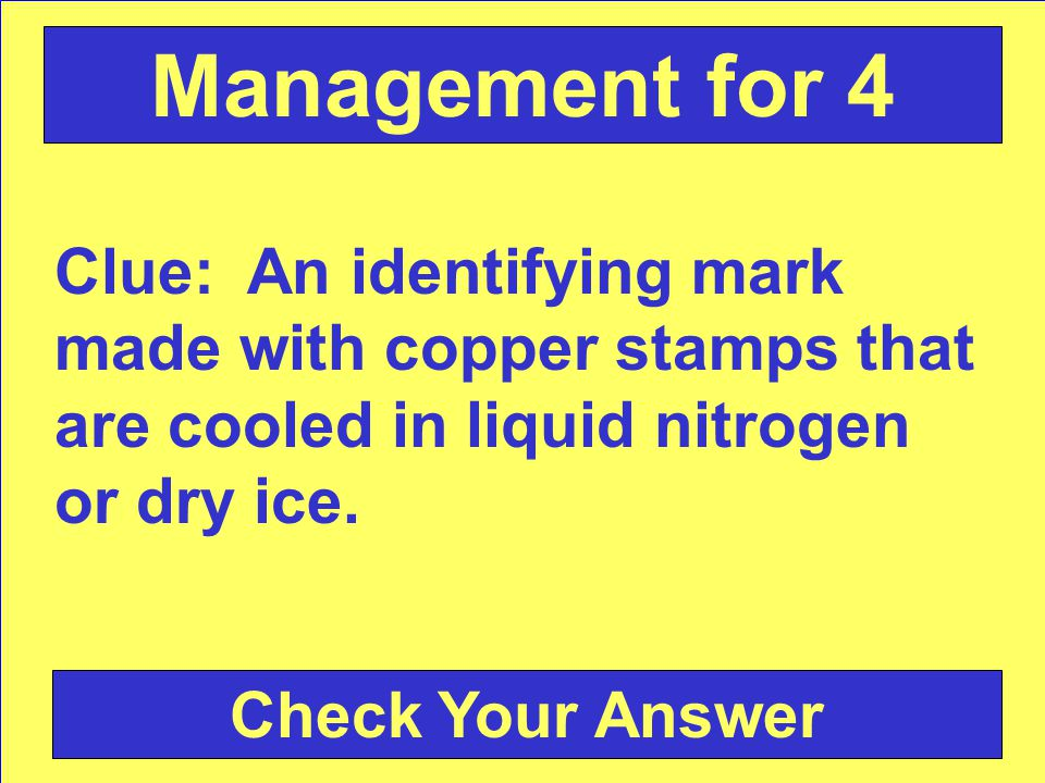 Clue: An identifying mark made with copper stamps that are cooled in liquid nitrogen or dry ice.