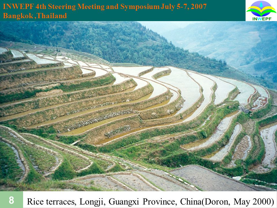 INWEPF 4th Steering Meeting and Symposium July 5-7, 2007 Bangkok,Thailand 39 Multi-functionality of paddy farming Food security Flood control Groundwater recharge Reduction of soil loss Air purification Enhancement of biodiversity 4