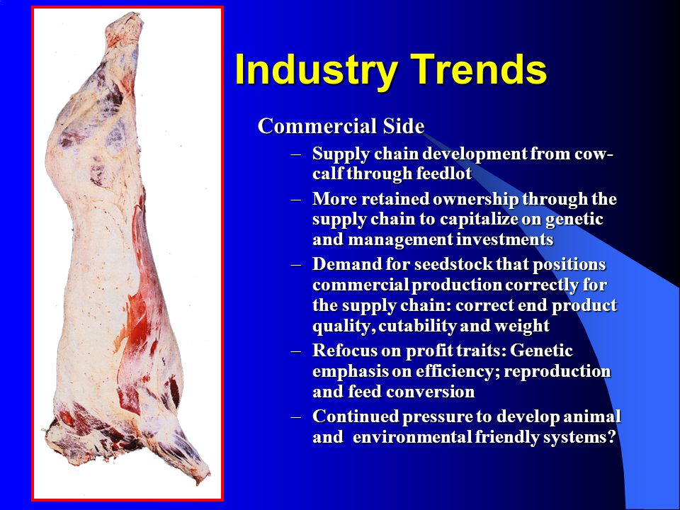 Industry Trends Commercial Side –Supply chain development from cow- calf through feedlot –More retained ownership through the supply chain to capitalize on genetic and management investments –Demand for seedstock that positions commercial production correctly for the supply chain: correct end product quality, cutability and weight –Refocus on profit traits: Genetic emphasis on efficiency; reproduction and feed conversion –Continued pressure to develop animal and environmental friendly systems