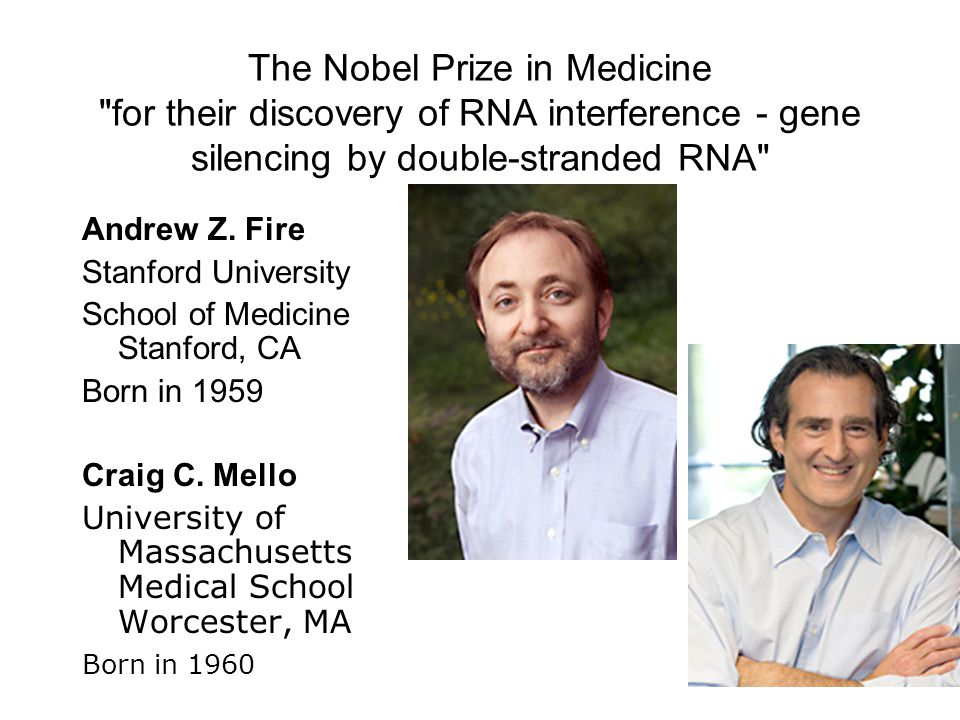 The Nobel Prize in Medicine for their discovery of RNA interference - gene silencing by double-stranded RNA Andrew Z.