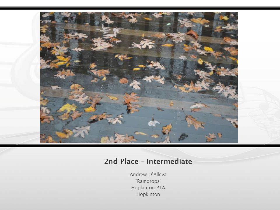 1st Place – Intermediate Sarah Furlong Magical Sunrise Hopkinton PTA Hopkinton