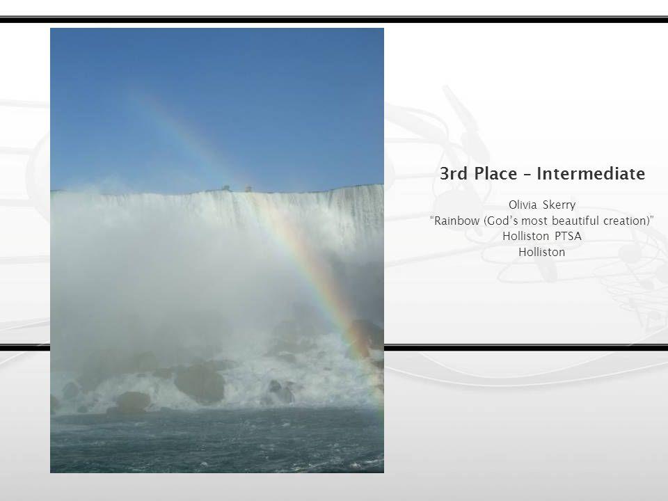 2nd Place – Intermediate Andrew DAlleva Raindrops Hopkinton PTA Hopkinton