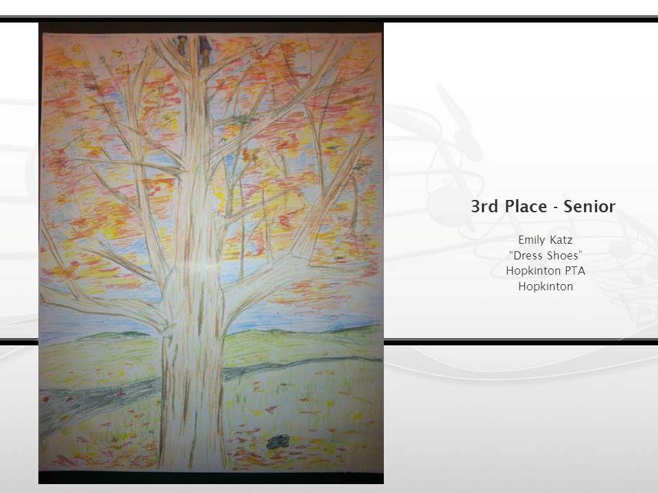 2nd Place - Senior Victoria Feng A Sparkle in Time Hopkinton PTA Hopkinton