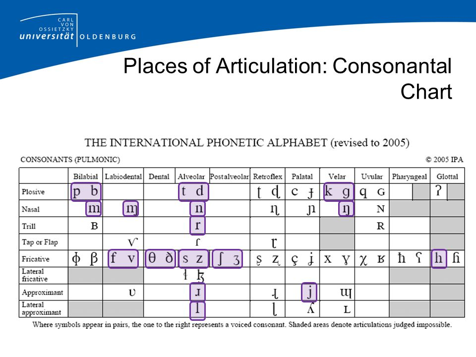 Places of Articulation: Consonantal Chart