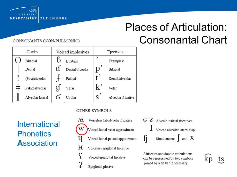 International Phonetics Association