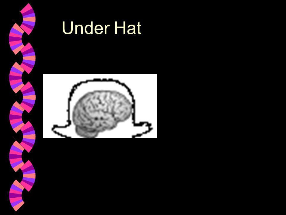 Under Hat