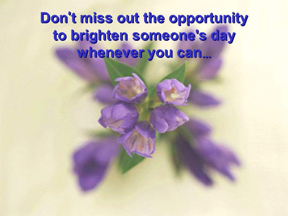 Don t miss out the opportunity to brighten someone's day whenever you can … Don t miss out the opportunity to brighten someone's day whenever you can