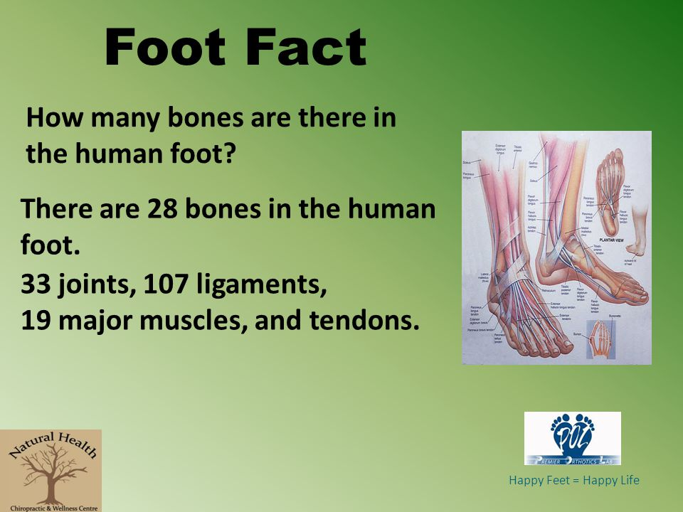 Bunions Common Foot Conditions