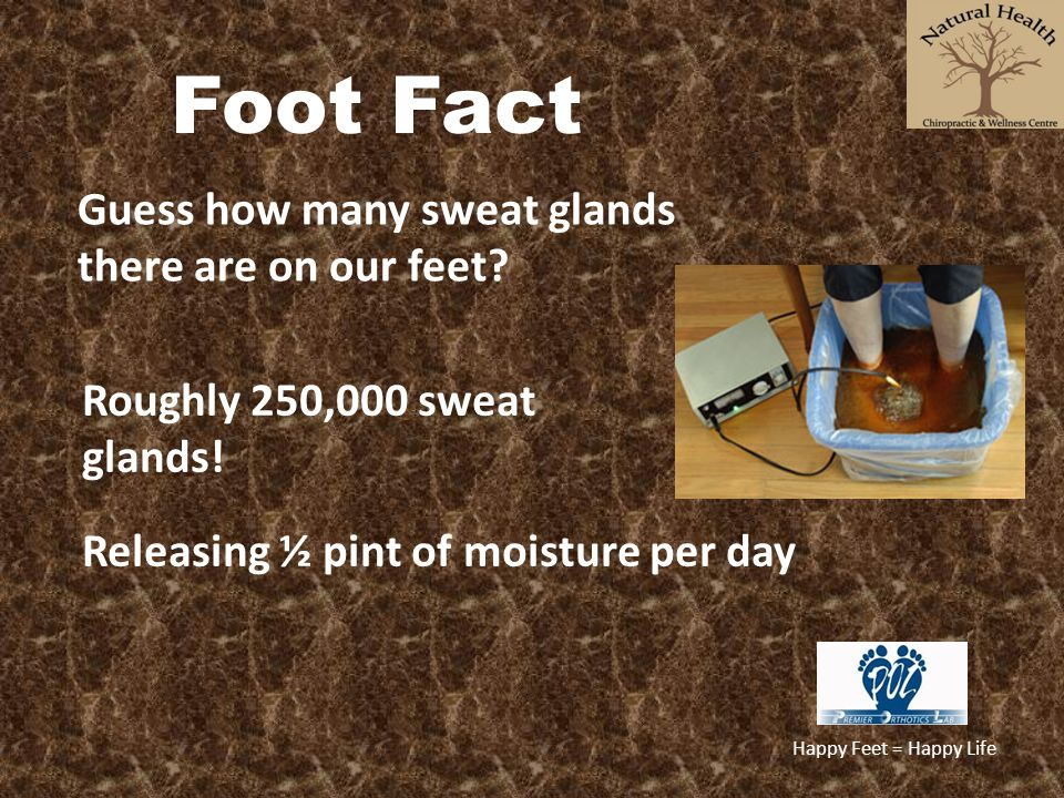 Happy Feet = Happy Life Foot Fact Guess how many sweat glands there are on our feet? Releasing ½ pint of moisture per day Roughly 250,000 sweat glands
