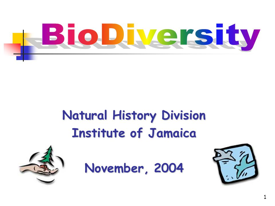 1 Natural History Division Institute of Jamaica November, 2004