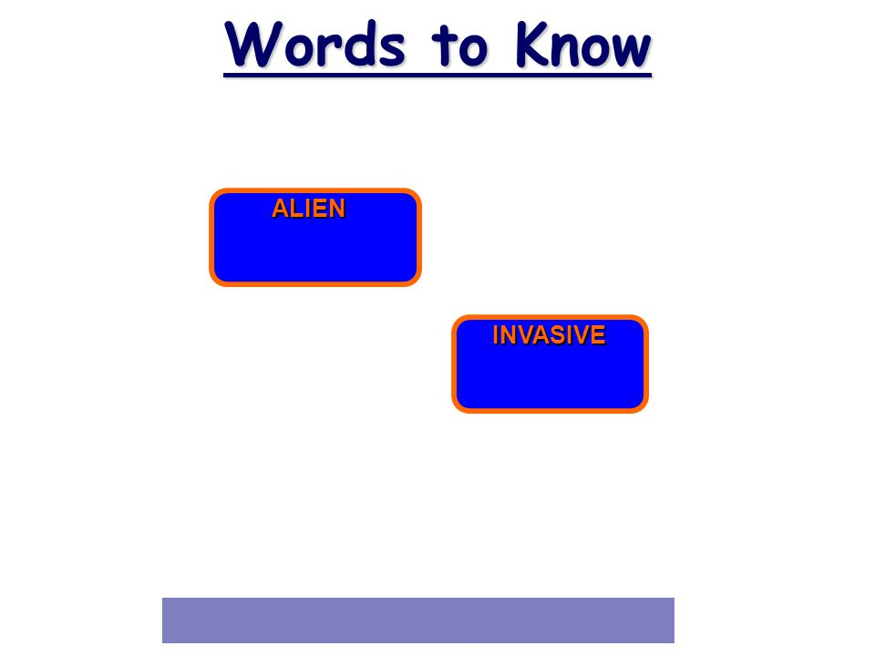 31 Words to Know ALIEN INVASIVE
