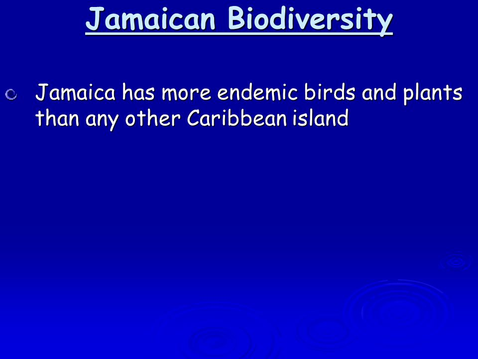 Jamaica has more endemic birds and plants than any other Caribbean island Jamaican Biodiversity