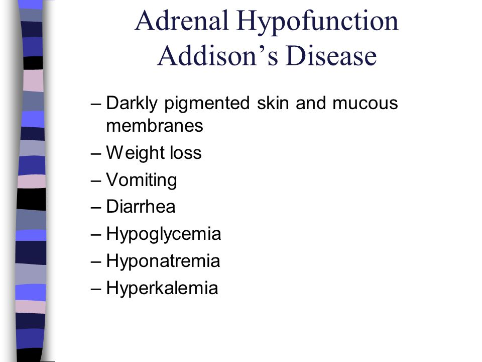 Adrenal Hypofunction Addisons Disease –Darkly pigmented skin and mucous membranes –Weight loss –Vomiting –Diarrhea –Hypoglycemia –Hyponatremia –Hyperk