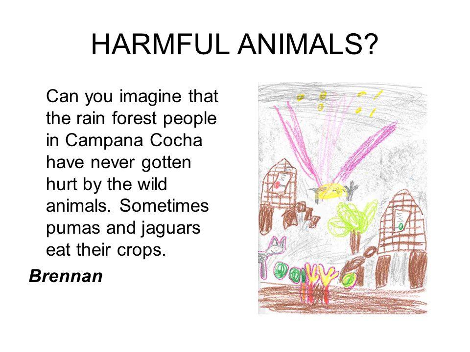HARMFUL ANIMALS.